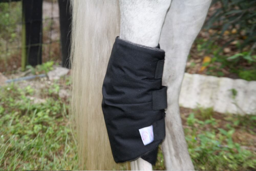 Draper Equine Therapy® Hock Boots